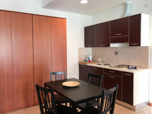 Studio apartment with big size bedroom, kitchenette and balcony.  - Gallery -  3