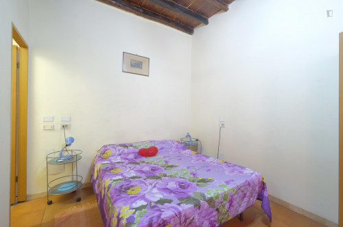 studio one bedroom apartment kitchen with kitchen and shower Monti near Colosseo  - Gallery -  2