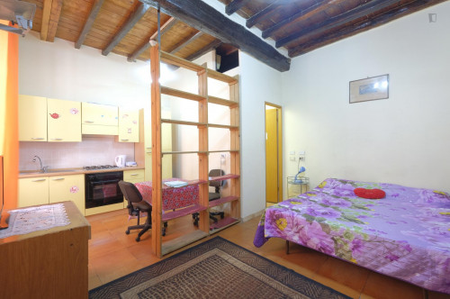 studio one bedroom apartment kitchen with kitchen and shower Monti near Colosseo  - Gallery -  1