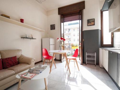 Very cosy apartment in Washington  - Gallery -  7