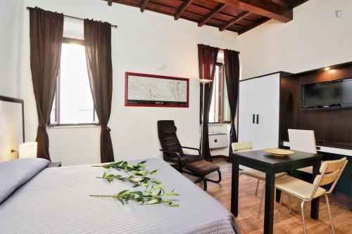 Wonderful studio near Basilica di Santa Maria in Trastevere  - Gallery -  6
