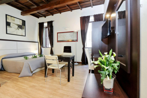 Wonderful studio near Basilica di Santa Maria in Trastevere  - Gallery -  1