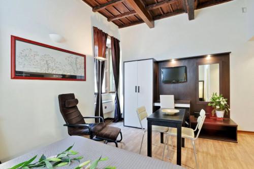 Wonderful studio near Basilica di Santa Maria in Trastevere  - Gallery -  4