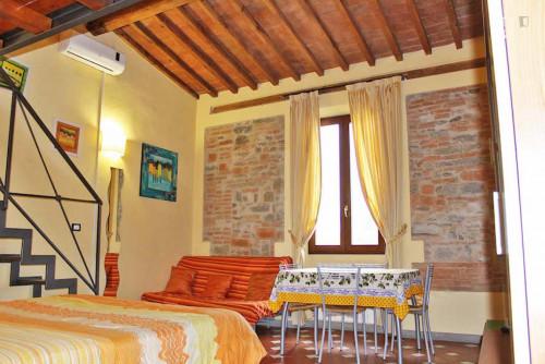 Warm and comfy studio near the Firenze P.Prato train station  - Gallery -  3