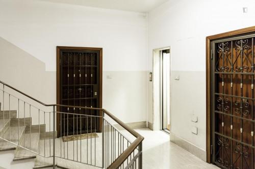 Very luxurious 3-bedroom apartment in the Municipio IX district  - Gallery -  3