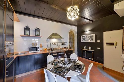 Wonderful 2-bedroom apartment close to Basilica di Santo Spirito  - Gallery -  8