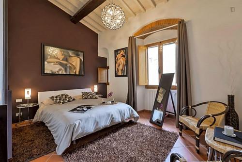 Wonderful 2-bedroom apartment close to Basilica di Santo Spirito  - Gallery -  4