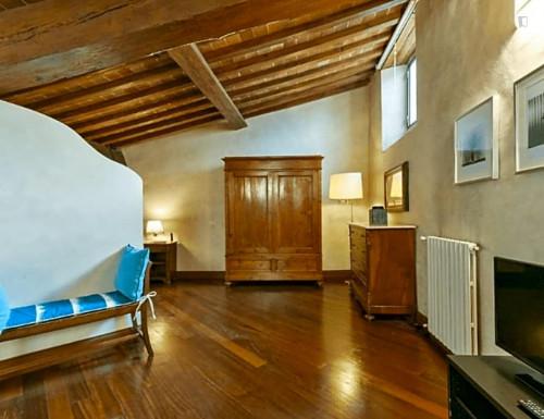Warm 1-bedroom apartment close to Basilica di Santo Spirito  - Gallery -  7