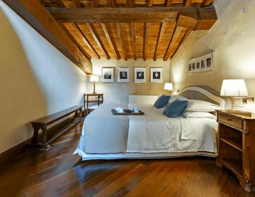 Warm 1-bedroom apartment close to Basilica di Santo Spirito  - Gallery -  2