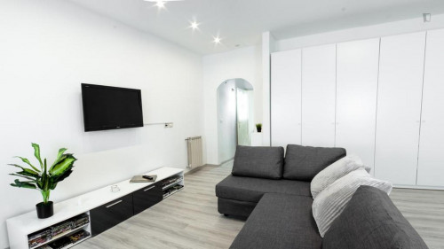 Wonderful 1-bedroom apartment near Giardino Torrigiani  - Gallery -  6