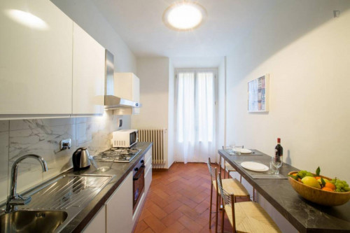Wonderful 2-bedroom apartment in Florence city centre  - Gallery -  6