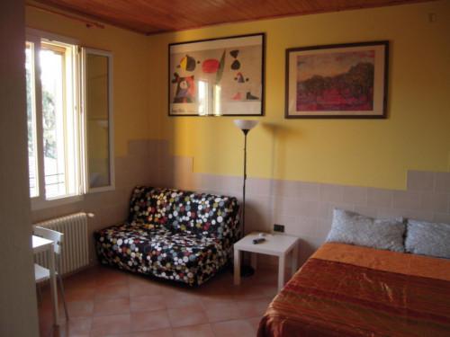 Very nice studio apartment in Saffi  - Gallery -  2