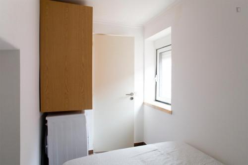 Very cosy studio not far from Marquês de Pombal  - Gallery -  2