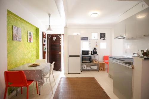 Very nice single bedroom in Caparica  - Gallery -  3