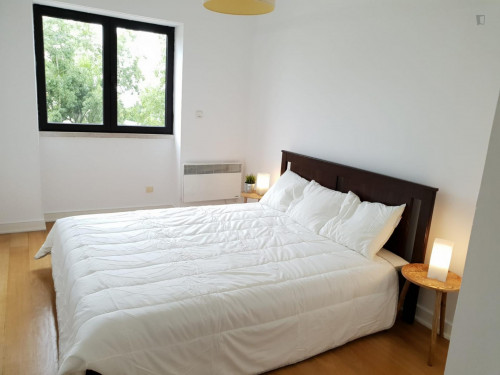 Welcoming double bedroom in a student flat, in São Bento  - Gallery -  2
