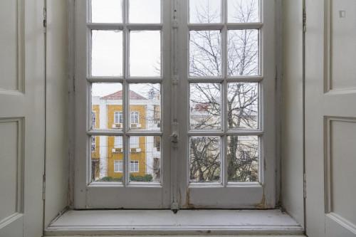 Welcoming single bedroom close to Faculdade De Economia  - Gallery -  1