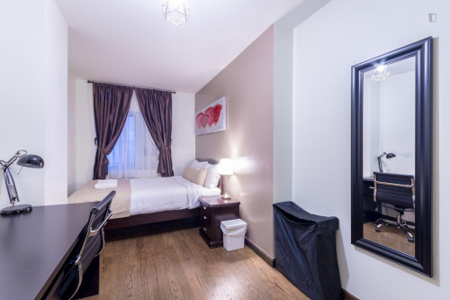 Wonderful double bedroom in a 2-bedroom apartment near Chrysler Building  - Gallery -  3