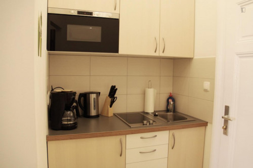 Stylish studio apartment neighbouring Ottakring  - Gallery -  3