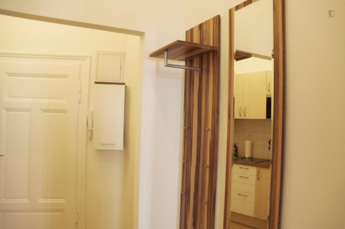 Stylish studio apartment neighbouring Ottakring  - Gallery -  2