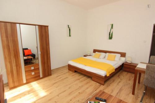 Stylish studio apartment in Rudolfsheim-Fünfhaus, right next to Auer-Welsbach-Park  - Gallery -  3