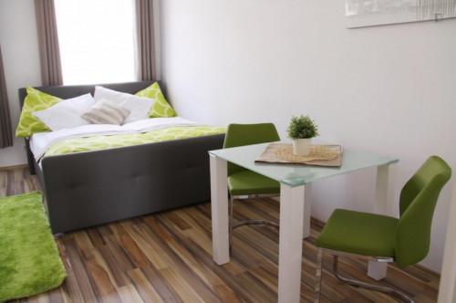 Superb studio apartment in Rudolfsheim-Fünfhaus  - Gallery -  2