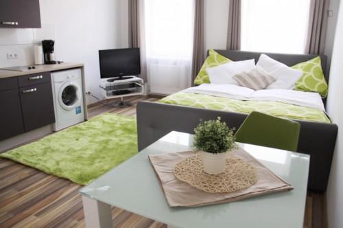 Superb studio apartment in Rudolfsheim-Fünfhaus  - Gallery -  1
