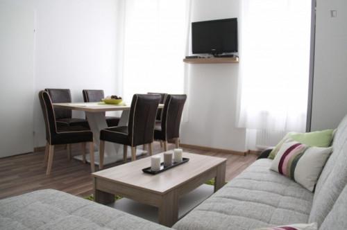 Stylish 2-bedroom apartment in the Favoriten neighbourhood  - Gallery -  1