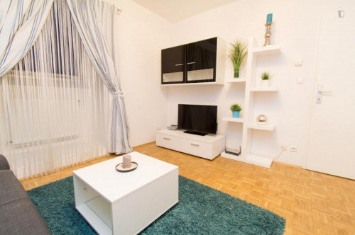 Very attractive 1-bedroom apartment near the Wien Liesing train station  - Gallery -  5