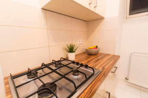 Very attractive 1-bedroom apartment near the Wien Liesing train station  - Gallery -  9