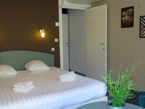 Cosy 1-bedroom apartment around Brugge train station