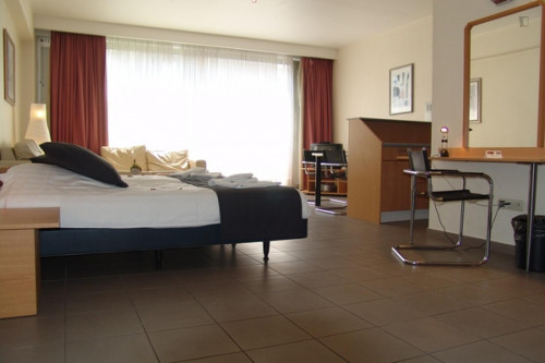 Lovely 1-bedroom apartment near Antwerpen Richard tram stop