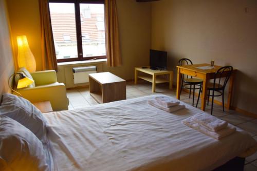 Charming 1-bedroom apartment near Park Spoor Noord