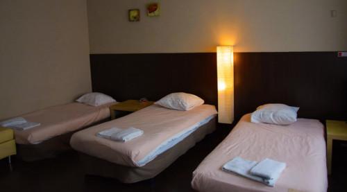 Lovely 1-bedroom apartment near Antwerpen De Coninck tram stop