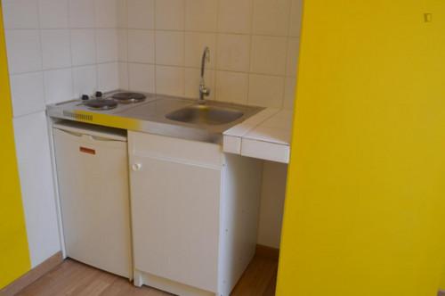 Wonderful studio in a residence near Robiano tram stop  - Gallery -  4