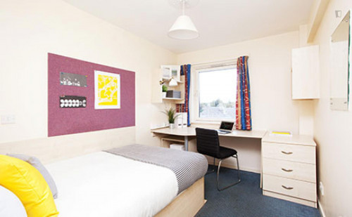 Very cool double ensuite bedroom in a residence, near the University of Aberdeen  - Gallery -  2