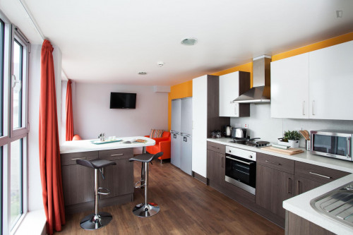 Very nice double ensuite bedroom in a residence, near the University of Edinburgh  - Gallery -  3