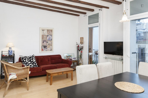 Very cool and fresh 2-bedroom apartment in the El Born neighbourhood  - Gallery -  1