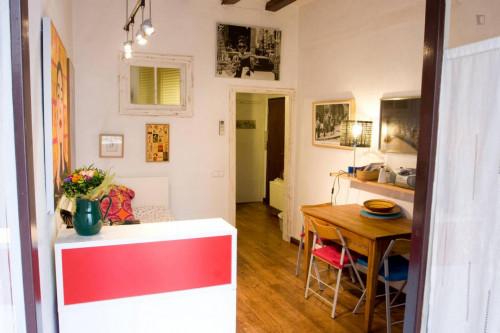 Welcoming 1-bedroom flat in El Raval  - Gallery -  1