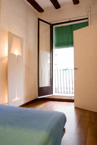 Welcoming 1-bedroom flat in El Raval  - Gallery -  7