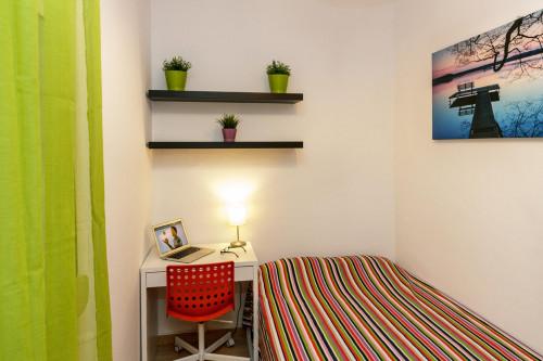 Very nice double bedroom near the Virrei Amat metro  - Gallery -  3