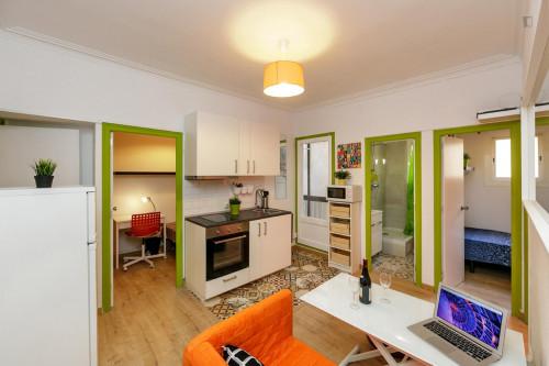 Very nice double bedroom near the Virrei Amat metro  - Gallery -  9