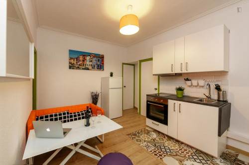 Very nice double bedroom near the Virrei Amat metro  - Gallery -  8