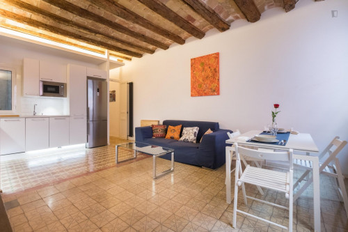 Welcoming 2-bedroom apartment in El Born  - Gallery -  6