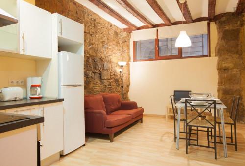 Very cool 2-bedroom apartment in El Barri Gòtic  - Gallery -  2