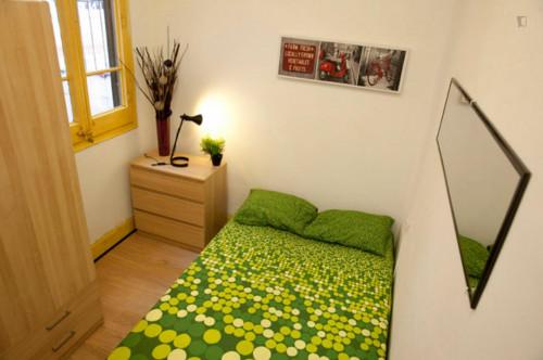 Very nice double bedroom near the Arc de Triomf metro  - Gallery -  2