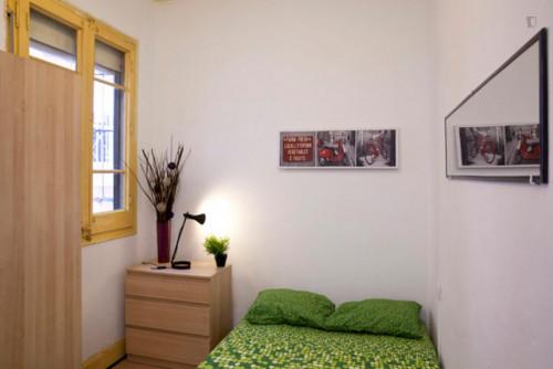 Very nice double bedroom near the Arc de Triomf metro  - Gallery -  1