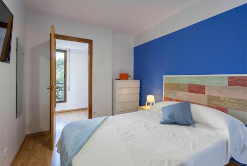 Wonderful double ensuite bedroom in a 5-bedroom apartment near Aragón metro station  - Gallery -  2