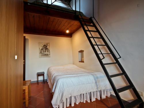 Sunny 2-bedroom apartment near Basilica di Santo Spirito  - Gallery -  2