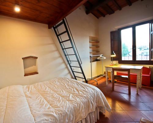 Sunny 2-bedroom apartment near Basilica di Santo Spirito  - Gallery -  1