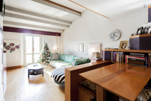 Wonderful 1-bedroom flat near Istituto Europeo  - Gallery -  7